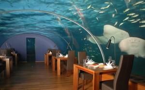 restaurante-submarino- oceanografic-valencia
