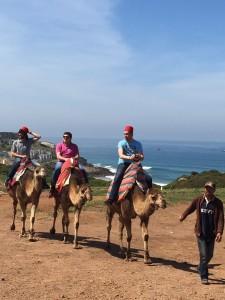 paseo_Camellos_tanger