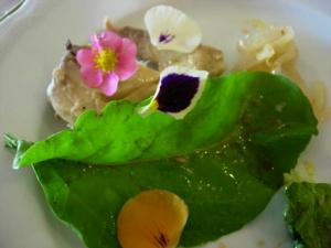 plato gourmet gredos 2