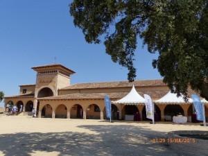 almazara_Toledo